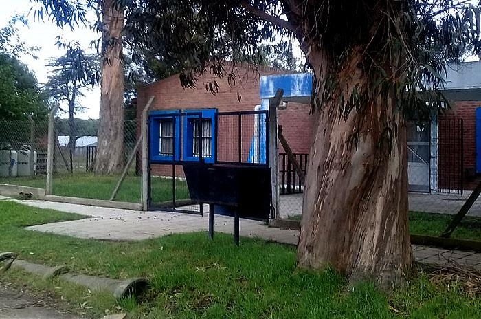 """Piden la poda de dos árboles en un jardín para """"evitar una tragedia"""""""