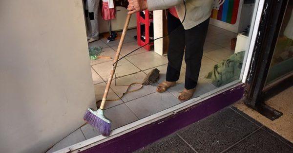 Rompieron una vidriera para robar por segunda vez en un mes