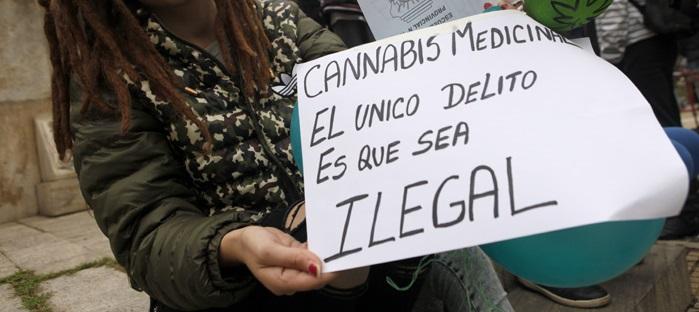 """Marihuana: """"Se necesita un acceso seguro al cannabis medicinal"""""""