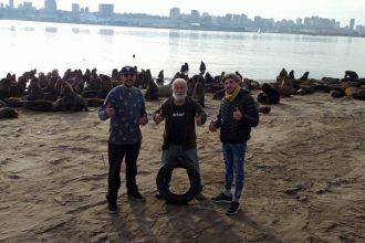 Video: Fauna Argentina le quitó el neumático al lobo marino