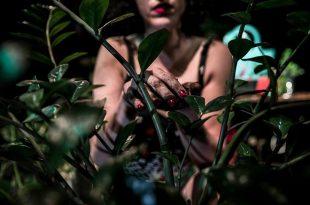 """""""Enterrada"""", una mujer que busca desenredar su historia"""