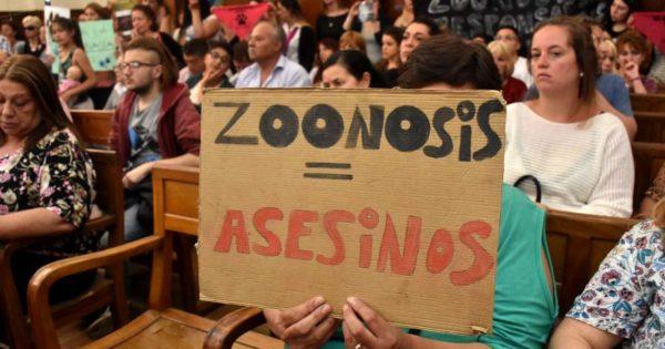 """Zoonosis: """"alegría y expectativa"""" de proteccionistas"""