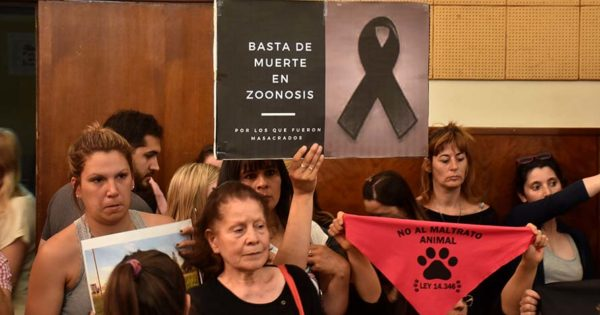 Anunciaron la reestructuración de Zoonosis y cambiaron a su director