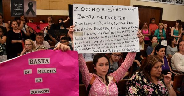 Proteccionistas exigen la destitución del titular de Zoonosis