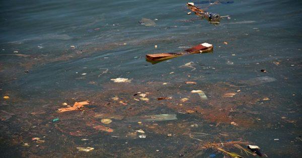 Piden llevar a juicio a siete empresarios por contaminar el Puerto de Mar del Plata