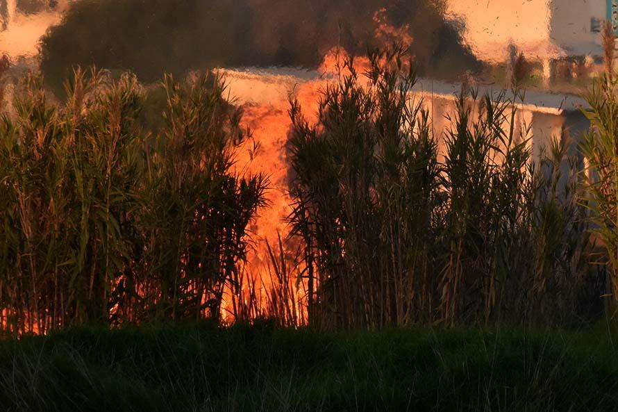 Vuelven a advertir por incendios forestales a partir de las altas temperaturas