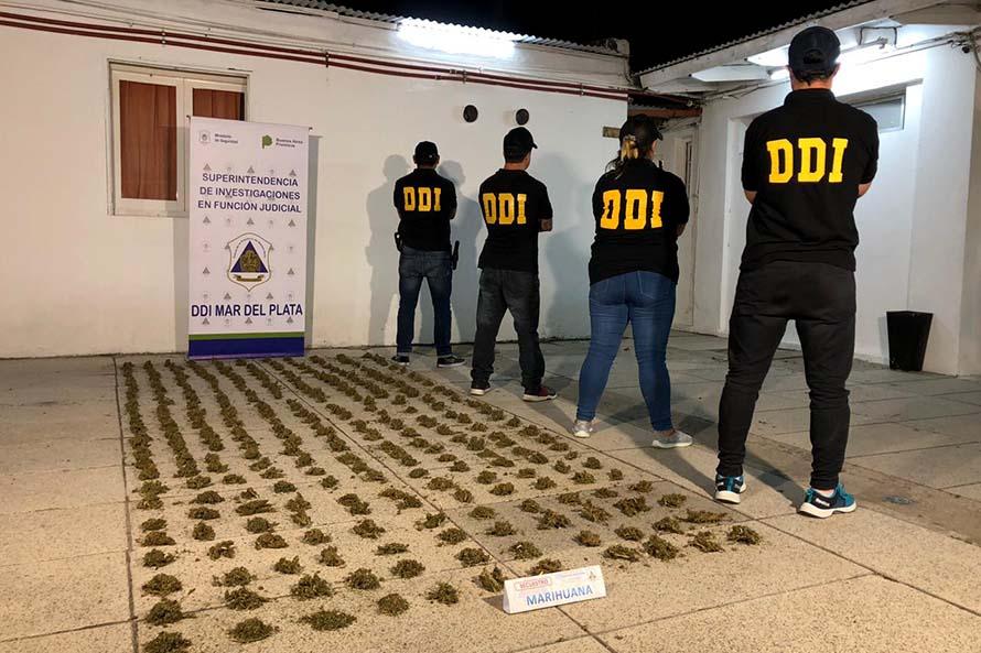 Robo, usurpación, allanamiento y marihuana: una detenida y un prófugo