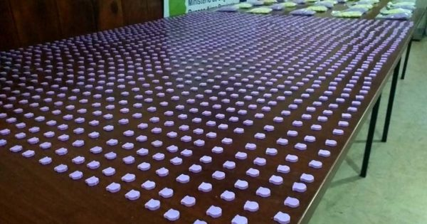Secuestraron 6 mil pastillas de éxtasis que eran traídas a Mar del Plata