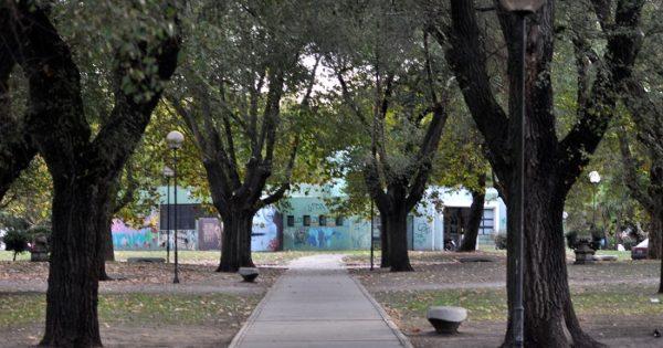 Quedaron inaugurados dos murales accesibles en la Biblioteca Parlante