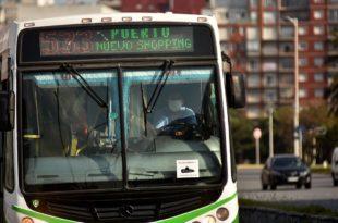 Colectivos: empresarios piden aumentar el boleto a $42 en Mar del Plata