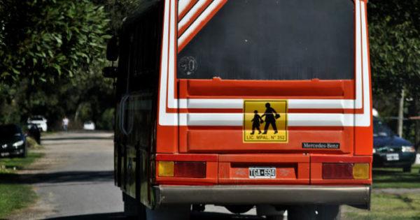 Buscan que el transporte escolar pueda funcionar con actividades habilitadas