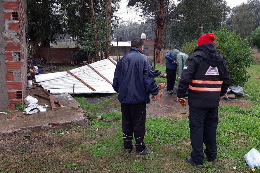Techos volados y caída de postes y árboles: los daños del viento en Mar del Plata