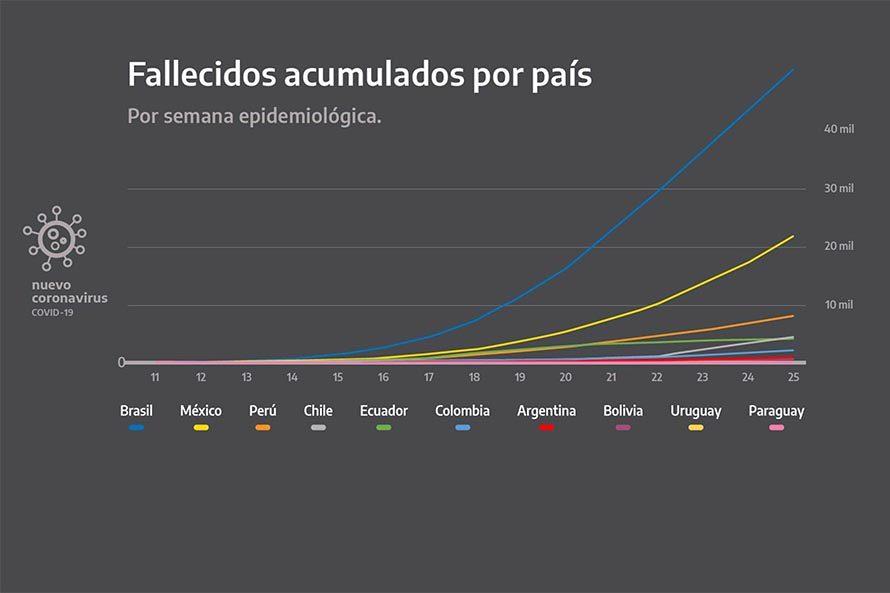 cuarentena graficos coronavirus conferencia alberto fernandez (4)