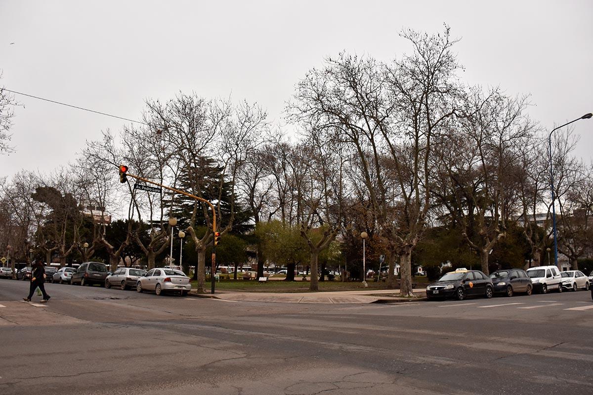 """Feriantes de Plaza Rocha piden retomar su actividad: """"Estamos desesperados"""""""