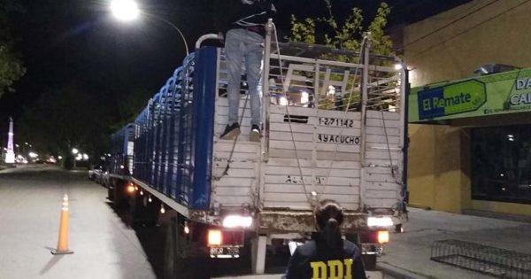 Dos detenidos por robar 128 cabezas de ganado valuadas en unos $7 millones