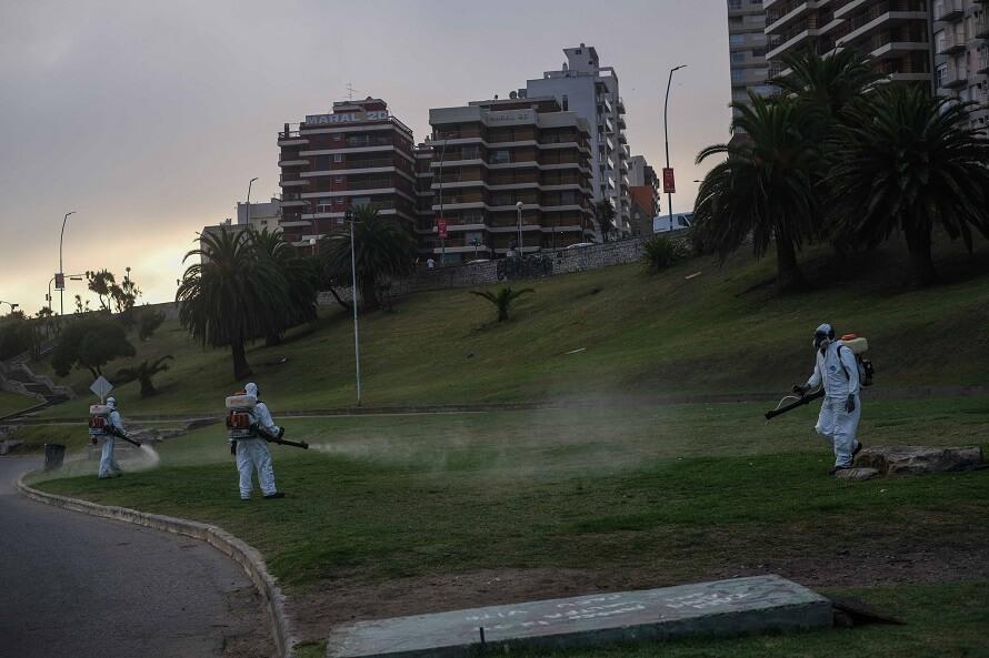 Calor y mosquitos en Mar del Plata: fumigaciones y un pedido de la oposición