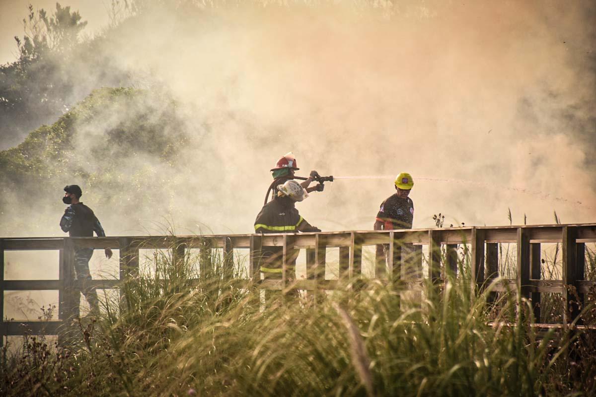 Un incendio afectó a la Reserva Natural del Puerto de Mar del Plata