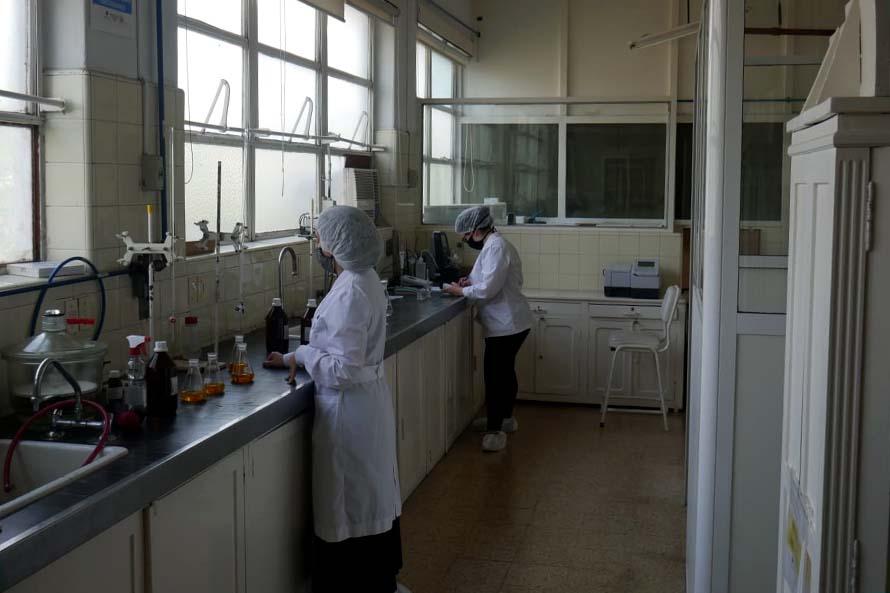 Farmacoop, la cooperativa que produce test rápidos para detectar covid-19 en el país