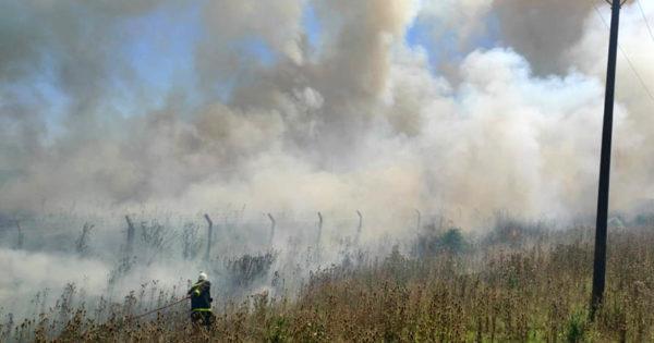 Tras 4 horas de trabajo, controlan un incendio de pastizales en un predio de Prefectura