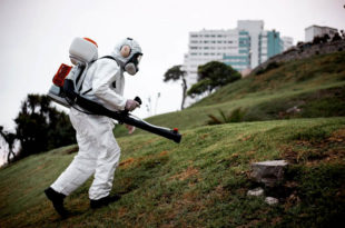 Intensifican las fumigaciones ante la mayor presencia de mosquitos