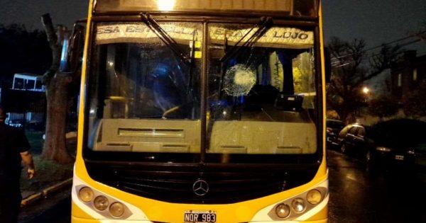 Piedrazos contra un colectivo y amenazas al chofer: dos detenidos