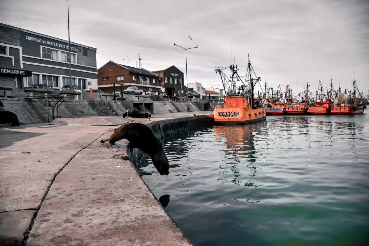 Banquina de los Pescadores: abren un concurso para jerarquizar el paseo turístico